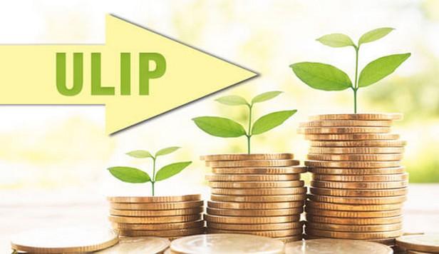 big ULIP 2018 2 9 17 43 12 839 best Insurance in Calicut. Insurance in kerala